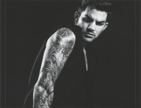 Adam Lambert The Original High Inlay