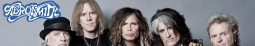 Aerosmith Banner (1)