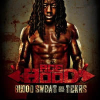 Ace Hood Blood Sweat Tears