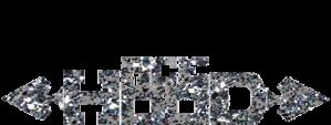 Ace Hood Logo 10