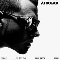 Afrojack Ten Feet Tall