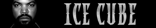 Ice Cube Banner